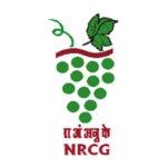 राष्ट्रीय द्राक्षे संशोधन केंद्र (ICAR-NRCG) मध्ये यंग प्रोफेशनल पदांची भरती
