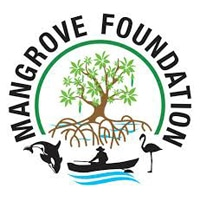 Mangrove Foundation Recruitment 2021